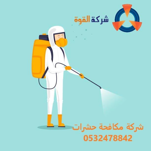 شركة مكافحة النمل الابيض بالقطيف 0532478842