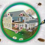 شركة مكافحة حشرات بالخبر | لرش الحشرات اتصل 0532478842