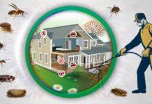 Photo of شركة مكافحة حشرات بالخبر   لرش الحشرات اتصل 0532478842
