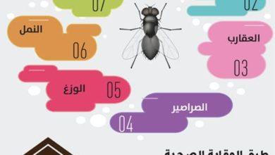 Photo of طرق مكافحة الحشرات والقوارض