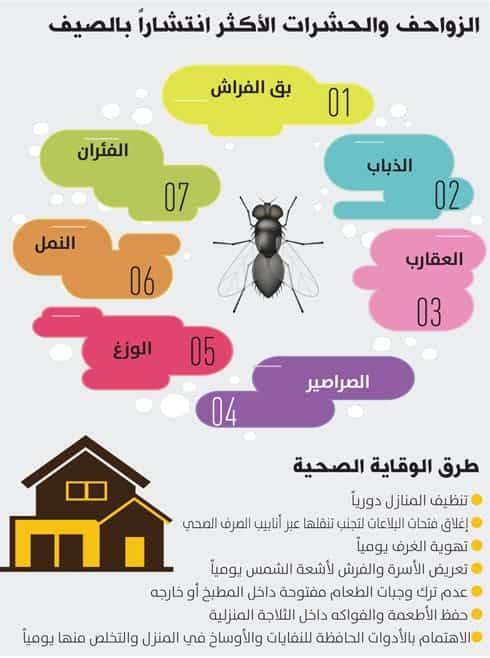 طرق مكافحة الحشرات والقوارض