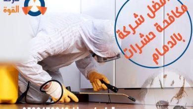 Photo of شركة مكافحة البق بالدمام لمكافحة الحشرات