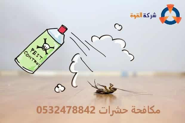 شركة ابادة حشرات بالدمام