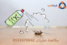 Photo of شركة مكافحة حشرات بصفوى