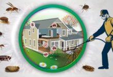 Photo of شركة مكافحة حشرات بالجبيل – شركة مكافحة الحشرات بالجبيل