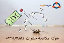Photo of شركة مكافحة حشرات بسيهات