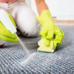 طريقة تنظيف الموكيت في مكانه
